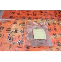 FASCE ELASTICHE ALFA ROMEO 1051202032